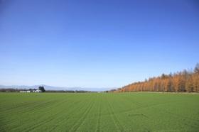 安倍首相の地元、耕作放棄地率が突出…「日本の田園守る」発言のデタラメ、農業破壊推進