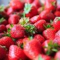 イチゴ、洗わずに食べると人体に危険!銅剤含有の農薬を大量使用、内臓に危害の恐れ