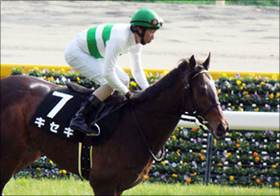 デムーロ騎手が「ルメールの影卒業」!? 素質馬キセキでレイデオロ斬りを果たせるか......