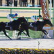 【ベルモントS(G1)展望】怪物エピカリスが米国三冠の最終章に名乗り!昨年ラニが3着した舞台で「米国2歳王者」との一騎討ちに挑む!