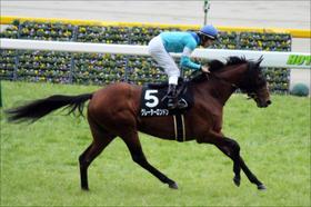 【ダービー卿チャレンジT(G3)・展望】逸材グレーターロンドンは、歴史的名馬への道を進めるか? 曲者揃いのマイル戦線を勝ち抜くのは!?