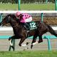 ファンディーナ引退......「皐月賞牝馬制覇」期待させた才媛の短すぎた春