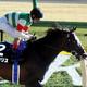 エピカリス、ケンタッキーダービー断念。世代最強ダート馬が見据える未来とは......