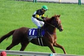 ヴィクトリアマイル(G1)レッツゴードンキ復活へ岩田康誠騎手が打った「布石」とは? G1レースを