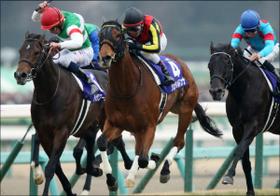 草野仁も利用している、夢のような制度...気軽に馬主気分が味わえ、3千万円の配当金獲得!