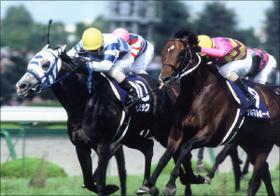 JRA宝塚記念(G1)「三大レース」を振り返る。ヒシミラクルの奇跡、グラスワンダーの衝撃......