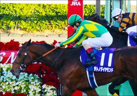 サトノダイヤモンドは「ジンクス」を破る馬!? 武豊キタサンブラックとの「死角なし対決」の行方