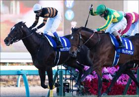 天皇賞(春)、「超エリートvs.雑草」に注目!圧倒的2強に割って入るのは「関西馬」?