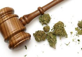 米国、大麻の使用が急拡大…連邦法では禁止、巨額税収の魅力、揺れるトランプ政権
