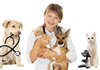ペット用医療が大幅進化、イヌ・ネコが長寿命化…再生医療やがん免疫細胞治療まで