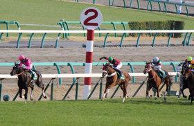 怪物ファンディーナ「最大」の不安......牝馬69年ぶりの皐月賞制覇、史上初の牡馬3冠への「絶対条件」とは【徹底考察・皐月賞編】