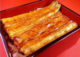 絶品の「うなぎの蒲焼き」は、なぜ美味いのか?知られざる職人技の全容を公開