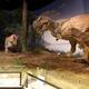 GWに必見!謎だらけ&世界最大の○○が見られる博物館!空飛ぶ翼竜の目線も体験