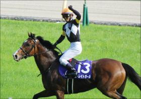 戸崎圭太騎手、今年もトップ騎手に向けて余念なし!! 4年連続リーディングジョッキーへ視界良好の理由