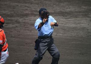 過酷労働でも報酬たった5千円…野球審判員、副業なしで生活困難な実情、プロは超狭き門