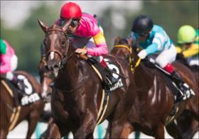 「元イエスタカス」ダッシングブレイズ重賞制覇に高須院長も「イエス」!? 名前に翻弄された素質馬の飛躍が話題