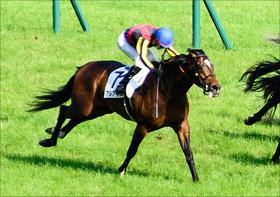 大阪杯(G1)アルアインが「今年盤石」川田将雅で上位必至? 「代役男」が競馬界の頂へ