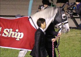 ゴールドシップ初産駒がセレクトセールに登場予定!! 順調な種牡馬生活を送るも気になるのはあの