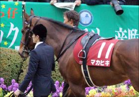 昨年の日本ダービー馬マカヒキ復活の鍵は「ダート」転向!? ダートで成功したディープインパクト産駒の意外な「共通点」とは