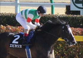 JRA→大井エピカリス初陣! モレイラも参戦で大注目の31日トゥインクル