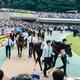 藤田菜七子騎手の同期が落馬負傷 昨年の関西新人王が「同じ馬で3度目の落馬」の