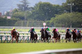 【北九州記念(G3)展望】サマースプリントシリーズ第4戦!シリーズ優勝へ名乗りを上げるのはどの馬か?
