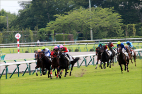 【福島牝馬S(G3)展望】連勝へカワキタエンカVS巻き返しトーセンビクトリー! 前走から続くライバル対決を制するのは?