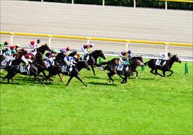 【アルテミスS(G3)展望】重賞制覇のチャンス到来!?牝馬限定重賞を制して世代の主役に名乗りを上げるのは?