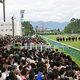 世紀の大失敗? 新潟直線1000mコースが競馬記者にも競馬関係者にも不評の理由。