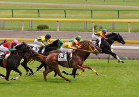 数分で千円が166万円に大化け!高額配当連発の夏競馬、超貴重情報を無料提供!