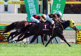 JRA札幌記念(G2)モズカッチャンは舞台バッチリ? デムーロがVSルメモレに挑む