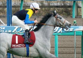 札幌記念(G2)マウントロブソンに「雷神」J.モレイラ降臨! 競馬界の『シルバニアファミリー』の異名を誇るグッドルッキングホースの実力は?