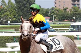 JRA試験「モレイラに日本語不要」? 競馬ライター須田鷹雄氏の「金言」に競馬ファン支持、見据えるはグローバル基準