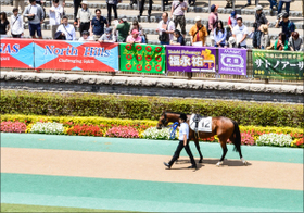 JRA和田竜二騎手、ファンへの「神対応」に大絶賛! 競馬界きってのお祭り男は中身もイケメン