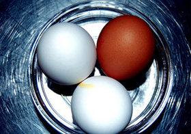 """「卵子凍結」は、将来の出産のための""""保険""""となりうるか?"""