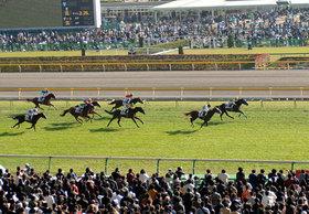 武豊・キタサンブラック、ルメール・レイデオロ、ソウルスターリング、サトノダイヤモンド......有力馬のローテから秋競馬を展望!
