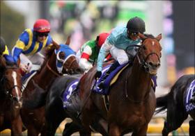 天皇賞、大人気のキタサンブラックの状態は...超豪華メンバー集結のレースを読み解く!
