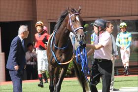 宝塚記念(G1)「重馬場の鬼」ワーザーが世界を見せつける!?「梅雨」「日本馬のピーク」「キタサン不在」計算尽くされた香港最強調教師の目論見