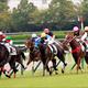 JRA牝馬クラシック、実は「1強」!? 関係者「ジェンティルドンナみたい」と大絶賛のアノ馬