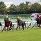 【京都2歳S(G3)展望】JRA2歳戦で唯一の2000mG3!タフなレースを勝ち上がるのはどの馬だ?