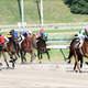 JRA史上最大の「大惨事」を想起......岩手・水沢競馬、衝撃の「6頭落馬」で人馬の容態が心配