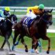 【東京大賞典(G1)展望】北島三郎・キタサンブラックの次はDr.コパ・コパノリッキー!? 「引退馬大活躍」で夢の「G1・11勝」確定か