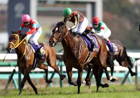菊花賞、過去最低レベルの大混乱状態…関係者が密かに注目する「あの関西馬」がカギ!