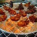 バッタのかき揚げ、セミの燻製…超栄養フード&美味の昆虫食が病みつきになる!