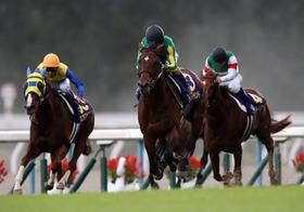 菊花賞、人気のアルアインの裏ネタを入手…西高東低の競馬界、愕然とするほどの実力差