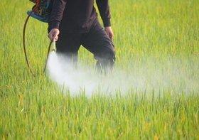 農薬残留の農産物や畜水産物、大量輸入の実態が判明…農産物、基準値超過は国産の5倍