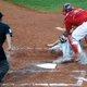 プロ野球審判員はなんでも知っている…1試合で数球は判定ミス、試合中に監督が采配を相談