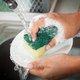 菌まみれの食器洗い用スポンジの危険な話…調理器具と食器で使い分けないとダメ!