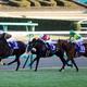 JRA「3億円馬」サトノジェネシスをルメールも絶賛! ダイヤモンド全弟がブラストワンピース超え「驚愕タイム」でクラシックに名乗り!