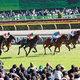JRAの強行開催に競馬「ストライキ」の可能性......有馬記念後12月28日の競馬開催に「断固反対」なのはファンだけではなかった?